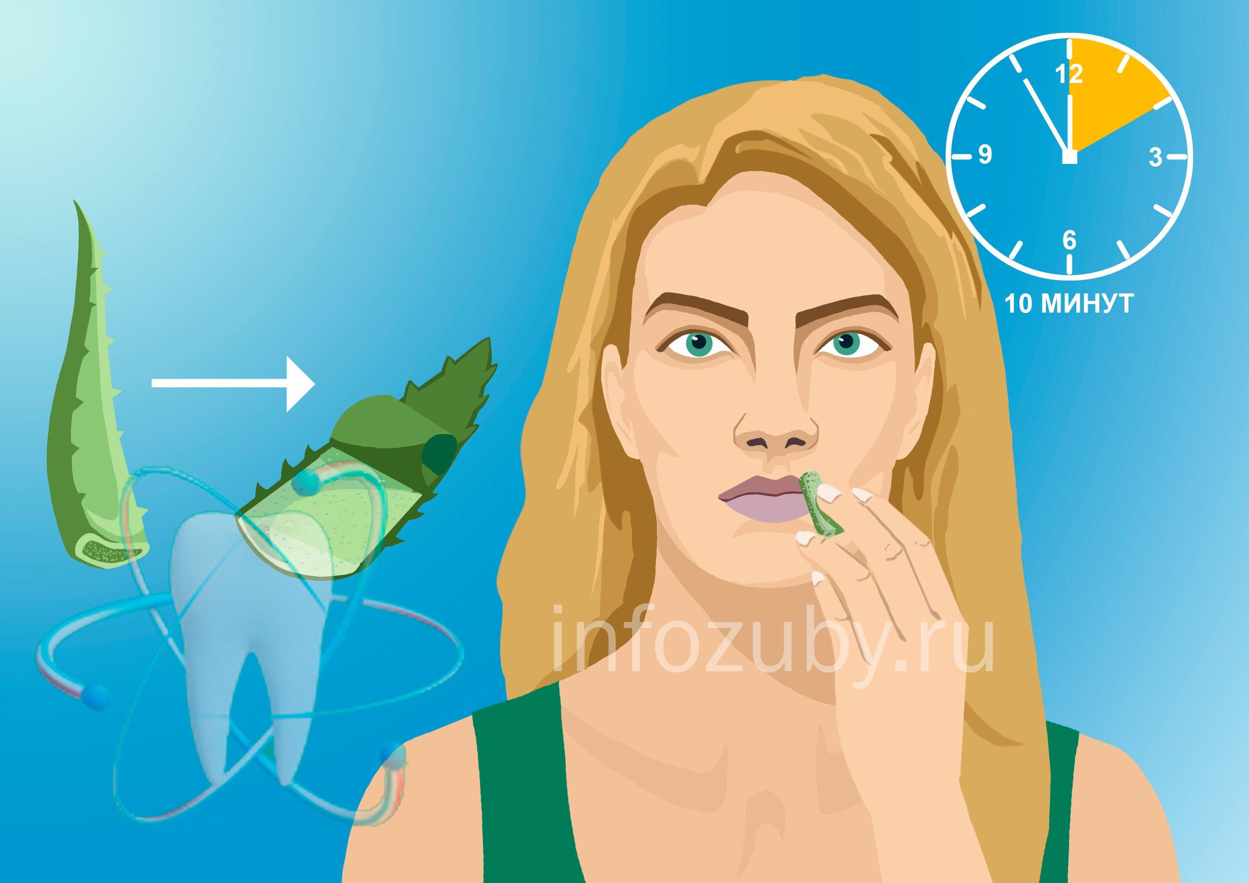Алоэ и проблемы на губах